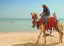 Cheap holidays in Sharm El Shieikh