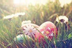 Easter Weekend Breaks  by Coach