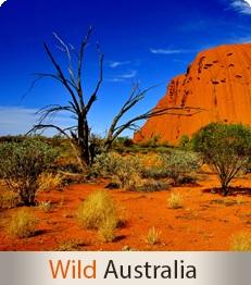 Wild Australia - Escorted tours to Australia