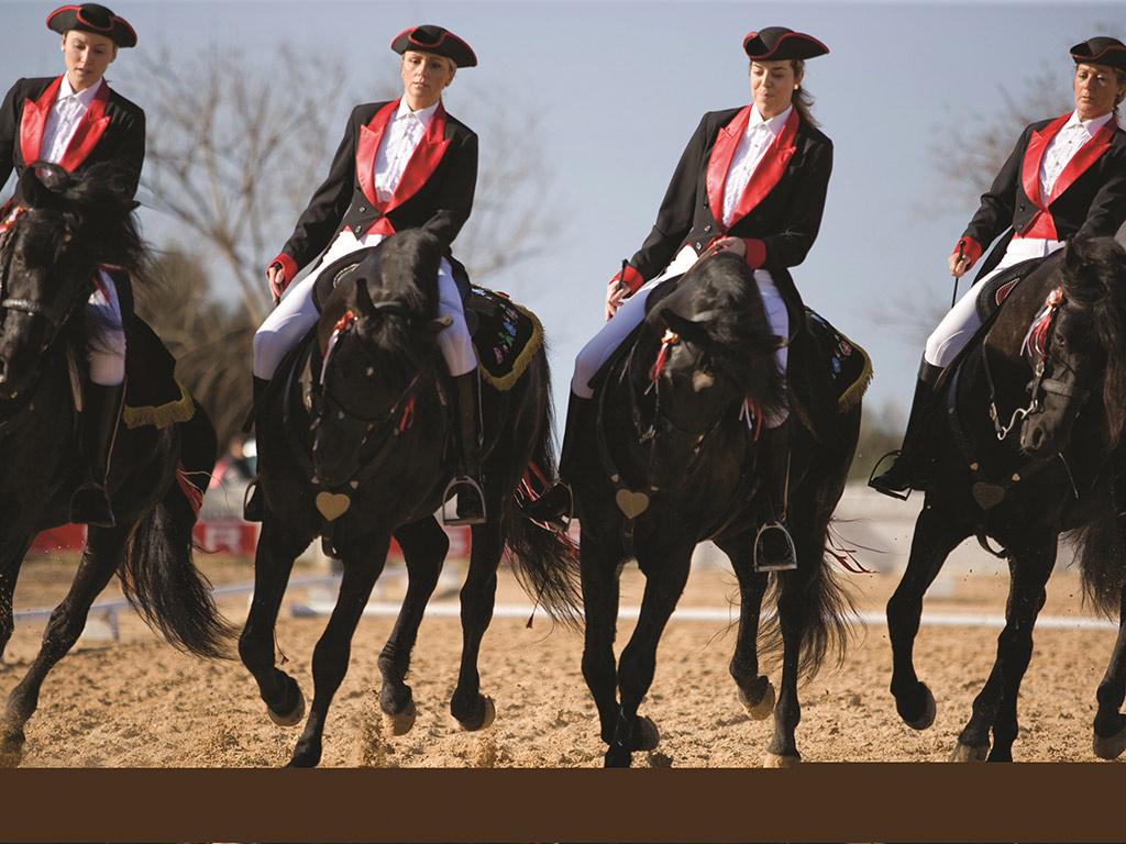 Son Martorellet Equestrian Show