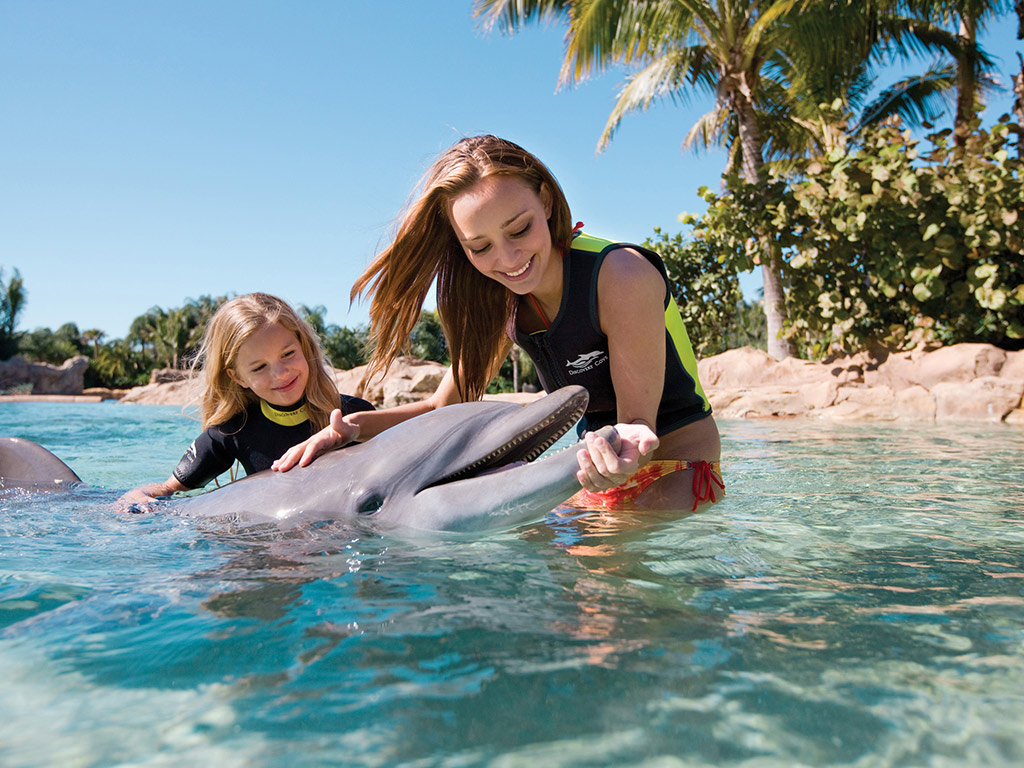 Discovery Cove swim with the Dolphins