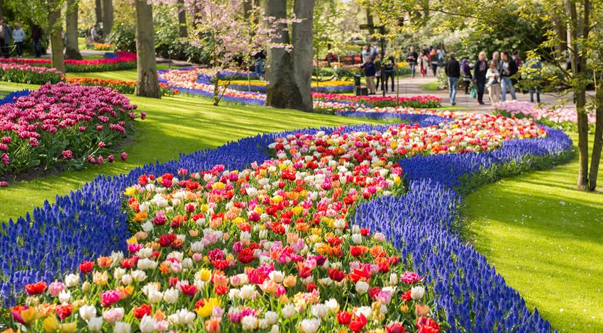 Keukenhof Gardens Spring