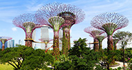 Singapore, Dubai & Thailand Cruise & Stay
