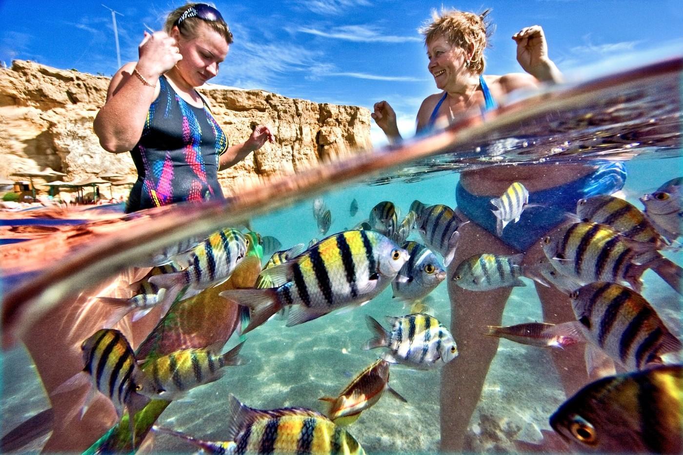 Cheap Hotels In Sharm El Sheikh