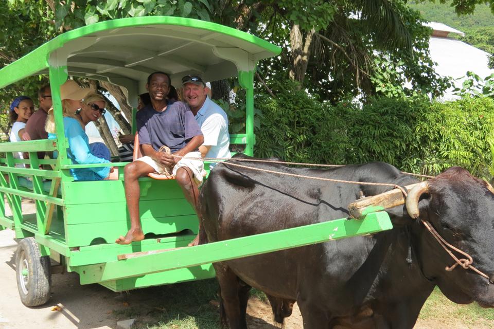 Ox Wagon in La Digue