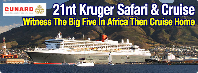 South African Cruises Tour Packages Cruisestcomau - Cruise ship packages south africa