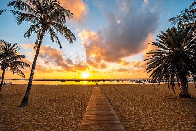 Canary Islands and Madeira