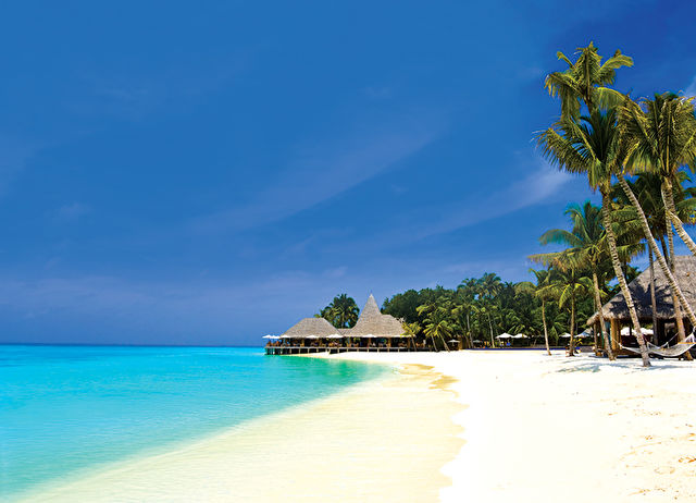 India and Maldives Stay and Cruise