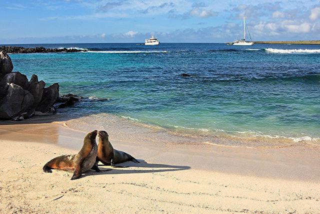 San Cristobal to Baltra, Galapagos