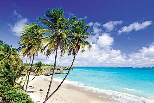Caribbean Voyages