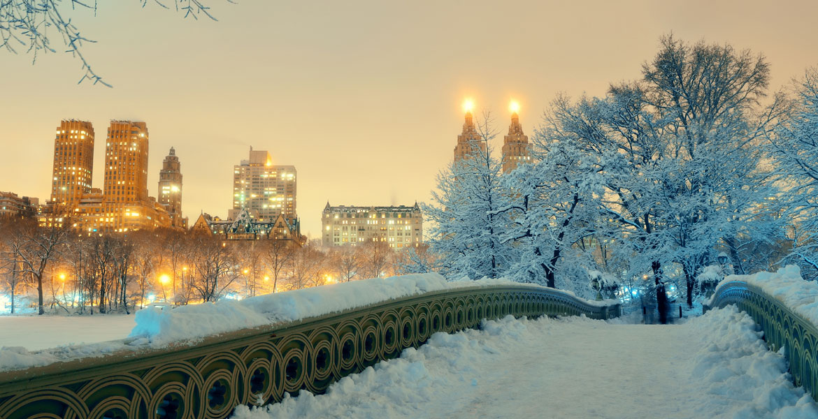 New York in Winter Image