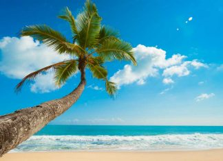 Princess Cruises leva você ao paradisíaco Caribe